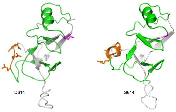 Antigen Modeling Figure copy.001-2