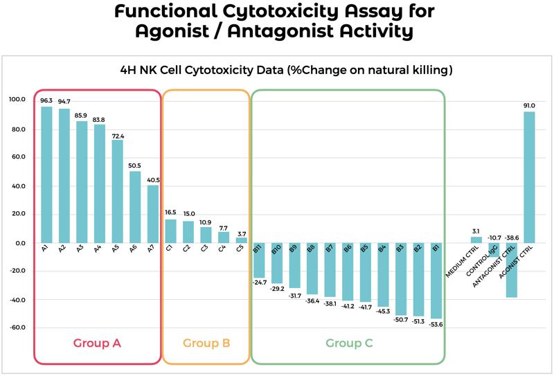 Functional-Assa-Blog-Post-IMG1