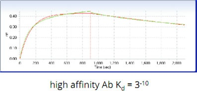 AS_Solutions_By_Service_Label-Free_Kinetics-Analysis_3