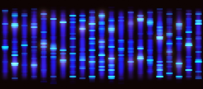 AS_Solutions_By_Service_mAb_Discovery_Sequencing