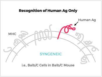 Recognition of Human Ag Only